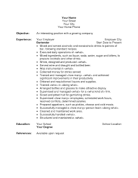 resume template  objective for bartending resu  selfirmgallery of objective for bartending resume