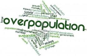 essays on overpopulation in  essays on overpopulation in