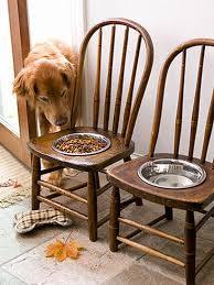 """Résultat de recherche d'images pour """"gamelle pour chien originale"""""""