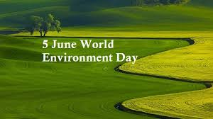 june world environment day essay article speech ideas world environment day slogans world environment day essay world environment day speech world environment day quotes