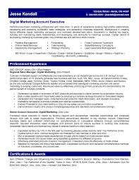 advertising account executive resume samples template template how to get sample online marketing manager resume