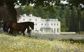 room english townhouse country style hotels resorts london coworth park horses  hotels resorts