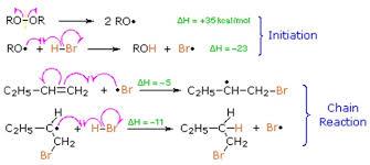 Alkenes Radical Additions   Homework Help   Assignment Help     TutorsGlobe      Functional Group Reactions Radical Homework Help jpg