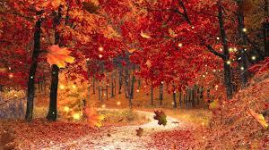 <b>Autumn Forest</b> Ambience [Music by Adrian von Ziegler - Autumn ...