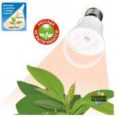 ФИТО светильники и лампы для <b>растений</b> - купить по низким ...
