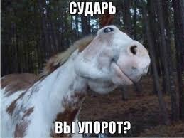 В Совете Федерации РФ считают текущий курс рубля к доллару адекватным - Цензор.НЕТ 2914