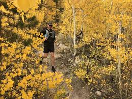The Best Trail <b>Running Shoes</b> of <b>2019</b> | OutdoorGearLab