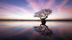 photography topics watch com mac stone