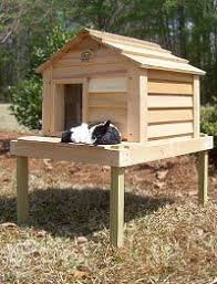 Cheap Outdoor Cat Houses   Discount Cat Furniture   Pinterest    Possibility for an outdoor cat house