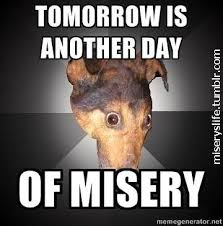 Misery Embodied in Memes via Relatably.com