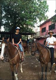 photos raees sultan dangal fan movies to look forward to in dangal raees sultan fan jagga jasoos ae dil hai mushkil