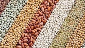 Resultado de imagen para imagen de granos y semillas uruguay