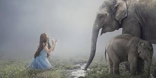 <b>Слон</b> по фен-шуй - символ процветания, богатства и ...