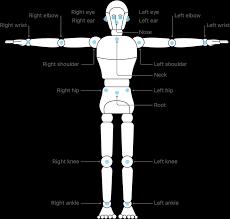 <b>Detecting Human Body</b> Poses in Images | Apple Developer ...