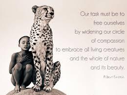 Einstein Quotes About Life Gallery