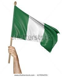 Image result for holding anigerian flag images