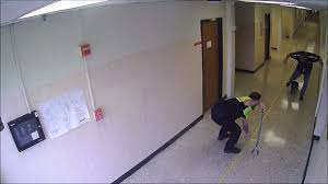 <b>Raccoon</b> chased through Euless High school in video   Fort Worth ...
