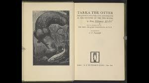 Image result for tarka the otter