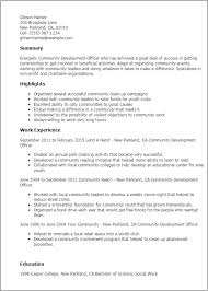 Professional Community Development Officer Templates to Showcase     My Perfect Resume