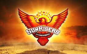 Image result for sunrisers hyderabad team logo