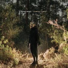 آلبوم <b>Lumino</b> Forest موسیقی کلاسیکال زیبایی از <b>Piano Novel</b> - والا ...