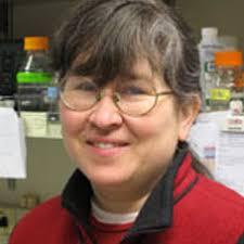 Kristin Robinson. Research Technician krobinso@fhcrc.org 206-667-4506 - Kristin_Robinson_227x227