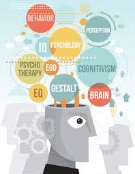 what to do a psychology degree what can you do a degree in psychology