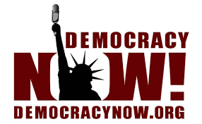 an essay on role of press in democracy democracy now