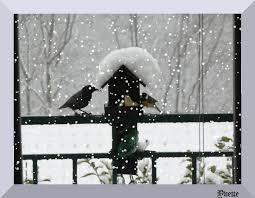 """Résultat de recherche d'images pour """"gifs de neige"""""""