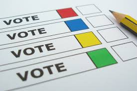 Image result for voting
