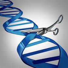 big questions about crispr human gene editing cbs news