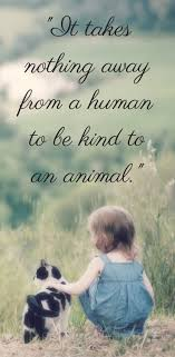 best animal quotes funny animal quotes cute it takes nothing away from a human to be kind to an animal