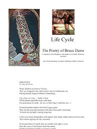 life cycle by bruce dawe maize