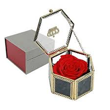 DreamJ <b>Eternal Rose</b>, Natural Eternal Life Rose <b>Flower with</b> Gift Box ...