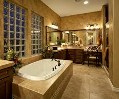 image bathtub decor:  images about bathroom on pinterest toilets small bathroom designs and decorating ideas