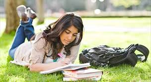 Professional Custom Essay Writing     FAMU Online