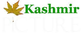 Image result for Kashmir LOGO