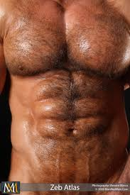 Hairy Muscle Men amp Smooth Bodybuilders amp BIG COCKS YOU MUST BE 18 YEARS OR OLDER TO FOLLOW ME IF UNDER AGE PLEASE UNFOLLOW Here youll find big cocks and muscle sex bodybuilders anything to do with muscle.