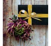 <b>Искусственные растения</b> : Купить в Калуге - цены в магазинах на ...