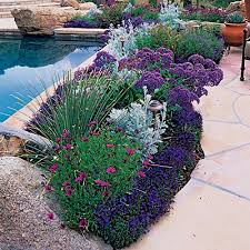 Small Picture 20 Garden Border Designs Garden borders Lavender and Gardens