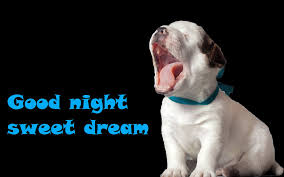 Image result for good night quotes blingee dogs