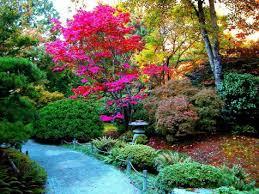 Bosque de Flores