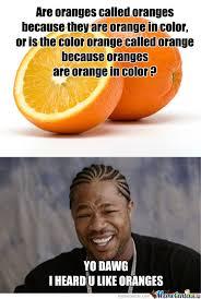Yo Dawg, I Heard U Like Oranges... by protoss - Meme Center via Relatably.com
