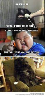 Fun pictures blog: Funny fat asian pictures via Relatably.com