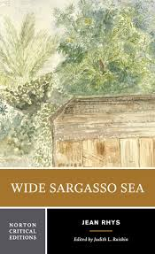 com wide sargasso sea norton critical editions com wide sargasso sea norton critical editions 9780393960129 jean rhys judith l raiskin books