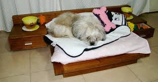 pets furniture most of the furniture provides pets with comfortable places to rest but some like amazoncom furniture 62quot industrial wood