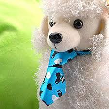 ELECTROPRIME <b>5X</b>(Adjustable <b>Dog</b> Cat <b>Pet Puppy</b> Toy Grooming ...