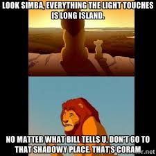Look Simba, everything the light touches is Long Island. No matter ... via Relatably.com