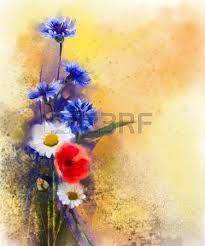 acrylic painting watercolor red poppy flowers blue cornflower and white daisy painting flower acryclic painting soft