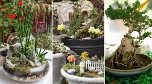 45 Amazing <b>Indoor Garden</b> Ideas: #27 is So Easy!
